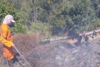 Kebakaran Hutan Di Gunung Semeru Meluas Capai 60,4 Hektare