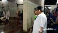 RPH Kota Malang Siapkan 20 Sapi untuk Lebaran