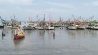 Keracunan Ikan Pirek Busuk, 2 Nelayan Lamongan Tewas, 3 Lainnya Tak Sadarkan Diri