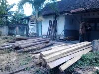 Bawa Kayu Hasil Hutan, Warga Kalipang Ditangkap Petugas Perhutani