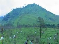 Ratusan hektar lahan rusak akibat erupsi kelud dan kekeringan, Perhutani Kediri siap lakukan penghijauan